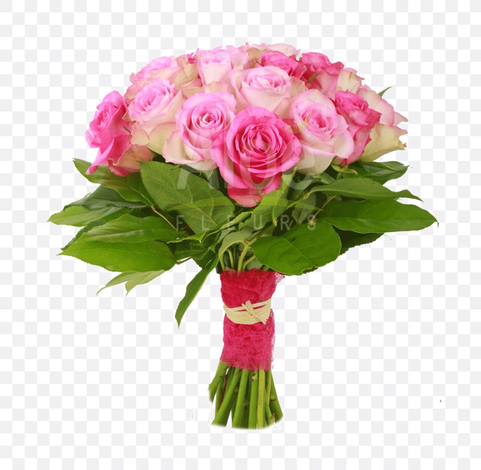 flower bokeh images